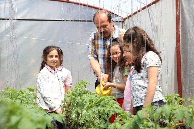 Kocaeli'nde Öğrenciler, Okullarındaki Seralarda Çiftçi Oldu