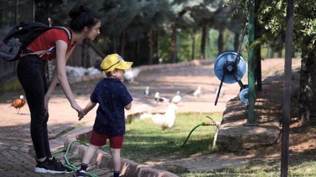 Bakan çağrıda bulundu, eğitim merkezi hayvanat bahçesine döndü